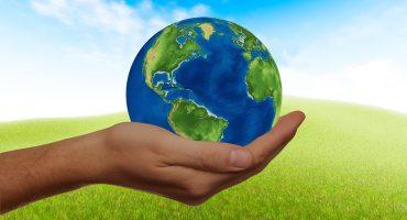 El cannabidiol extraído del cáñamo es más sustentable